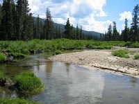 Idaho Hunting Land for Sale and Land for Lease in Idaho