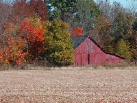 Indiana Hunting Land for Sale and Land for Lease in Indiana