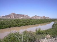 Texas Hunting Land for Sale and Land for Lease in Texas